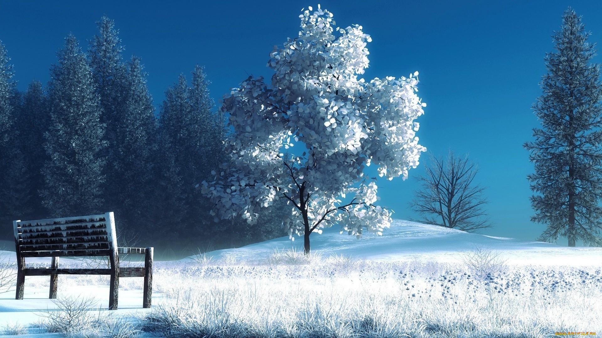 наоборот, картинки на рабочий стол красота зима большие лилии